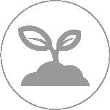 Haustechnik Pelletheizung Holzheizung Lüning GmbH Anröchte